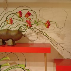 Flowers 1 at Gallery Sola